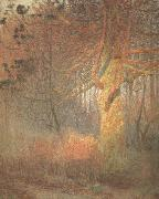 Tree in the Sun (nn02) Emile Claus