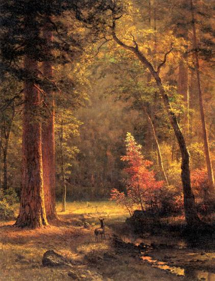 Albert Bierstadt Dogwood by Albert Bierstadt